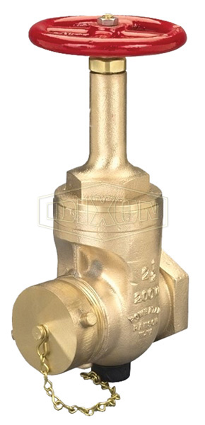 Rising Stem Wedge Disc Gate Valve