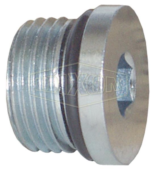 Hollow Hex O-ring Plug